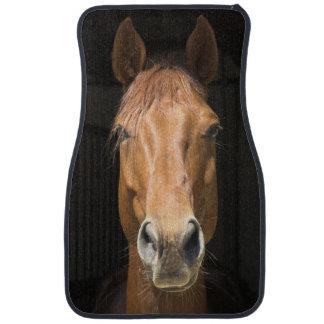 Fotografía de la cara del caballo alfombrilla de auto