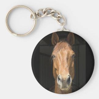 Fotografía de la cara del caballo llavero redondo tipo pin