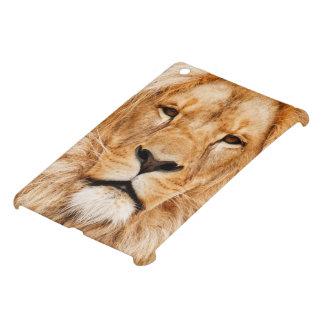 Fotografía de la cara del león iPad mini coberturas