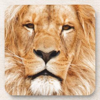 Fotografía de la cara del león posavasos de bebida