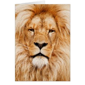 Fotografía de la cara del león tarjeton