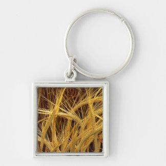 Fotografía de la cebada llavero cuadrado plateado