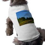 Fotografía de la corriente del cielo azul de los á camiseta de perro