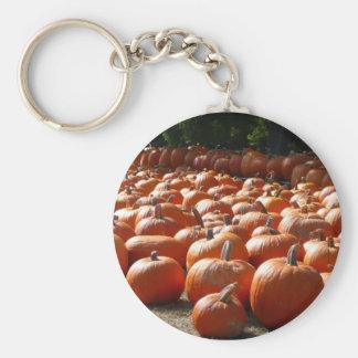 Fotografía de la cosecha del otoño del remiendo de llavero redondo tipo pin