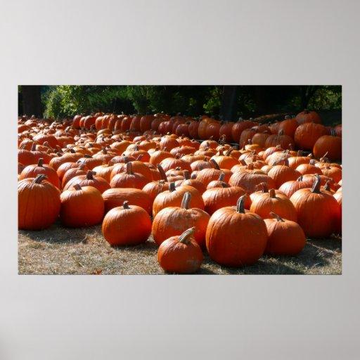 Fotografía de la cosecha del otoño del remiendo de póster