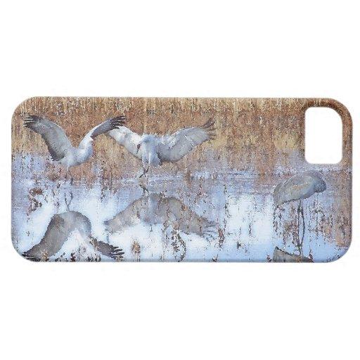 Fotografía de la fauna de los animales de los funda para iPhone SE/5/5s