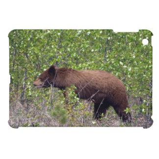 Fotografía de la fauna del oso negro de Brown iPad Mini Protector