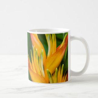 Fotografía de la flor de la ave del paraíso de taza
