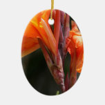 Fotografía de la flor de la ave del paraíso ornamento de navidad