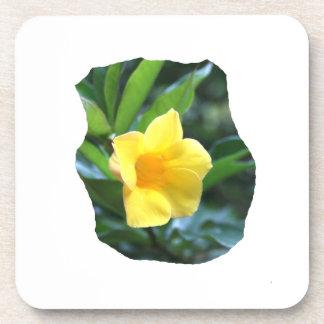 Fotografía de la flor de trompeta amarilla posavasos de bebida