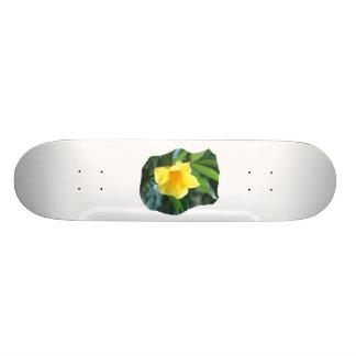 Fotografía de la flor de trompeta amarilla skate boards