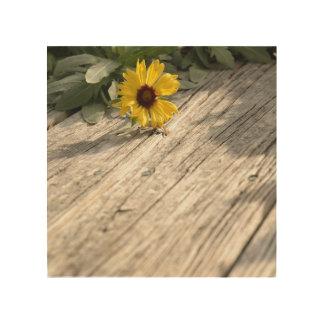 Fotografía de la flor salvaje impresiones en madera