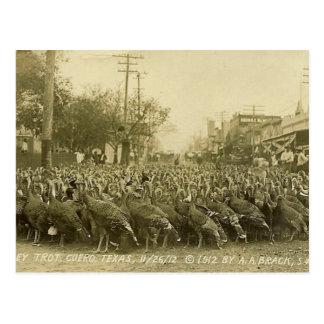 Fotografía de la granja de Turquía del vintage Tarjetas Postales