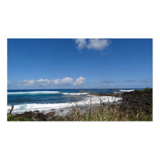 Fotografía de la hierba de la playa de la tarjeta  tarjeta de visita