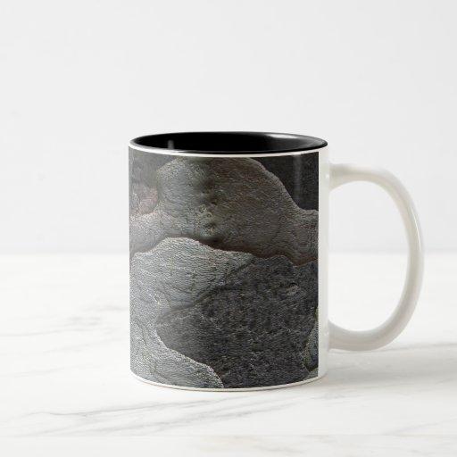 Fotografía de la macro de la corteza de árbol taza