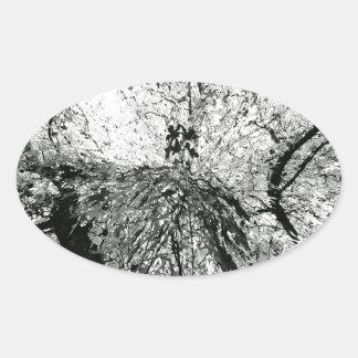 Fotografía de la mancha de tinta del árbol de arce calcomania oval personalizadas