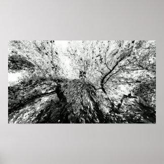 Fotografía de la mancha de tinta del árbol de arce póster