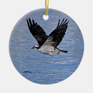 Fotografía de la naturaleza de Eagle de pez Adorno Navideño Redondo De Cerámica