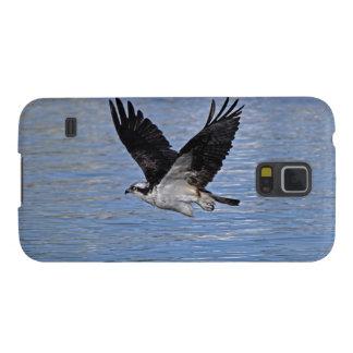 Fotografía de la naturaleza de Eagle de pez Carcasa Galaxy S5
