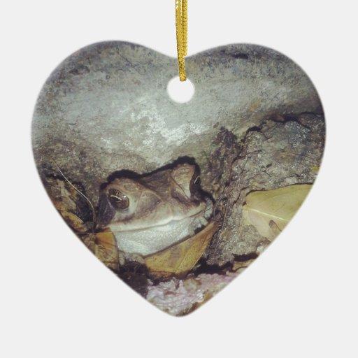 Fotografía de la naturaleza de Le Toad Nighttime Adorno Navideño De Cerámica En Forma De Corazón