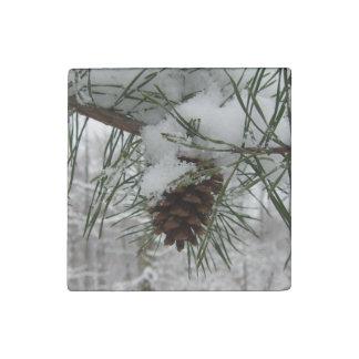 Fotografía de la naturaleza del invierno de la imán de piedra