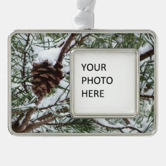 Fotografía de la naturaleza del invierno del cono adornos con foto