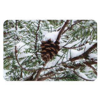 Fotografía de la naturaleza del invierno del cono imanes