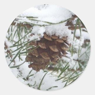 Fotografía de la naturaleza del invierno del cono pegatina redonda