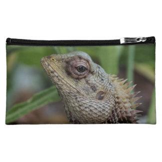 Fotografía de la naturaleza del reptil del lagarto
