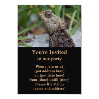 """Fotografía de la naturaleza del reptil del lagarto invitación 5"""" x 7"""""""