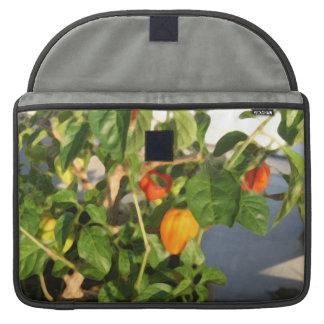 Fotografía de la planta del habanero con pimientas fundas para macbooks