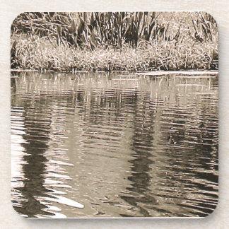 Fotografía de la sepia de la charca posavaso