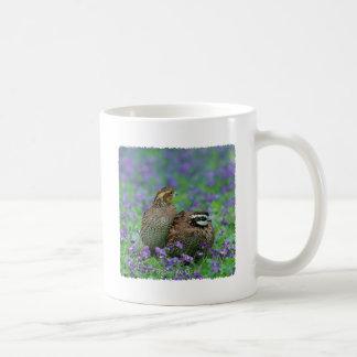 Fotografía de las codornices tazas de café