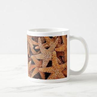Fotografía de las estrellas de mar tazas de café