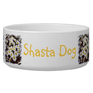 Fotografía de las margaritas de Shasta Comedero Para Mascota