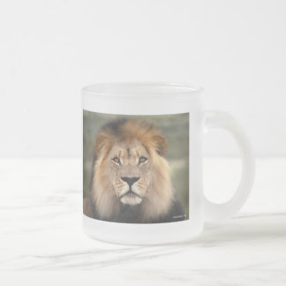 Fotografía de los leones taza de café
