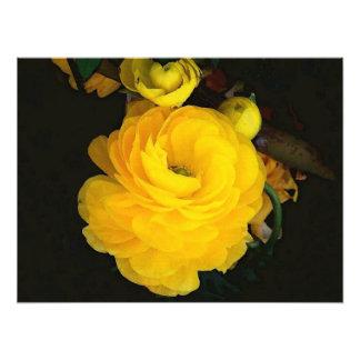 Fotografía de los rosas amarillos fotografía