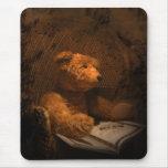Fotografía de mirada vieja de Mousepad del oso de Alfombrillas De Raton