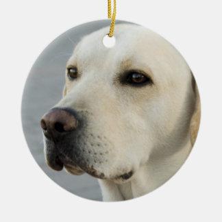 Fotografía de oro del labrador retriever adorno navideño redondo de cerámica
