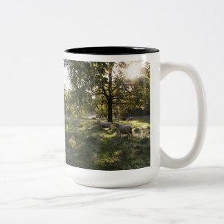 Fotografía de ovejas tazas de café