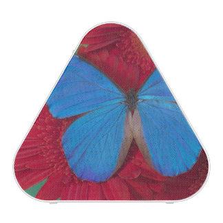 Fotografía de Sammamish Washington de la mariposa  Altavoz