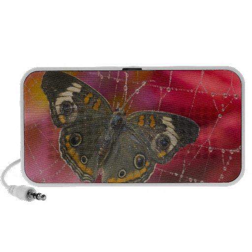 Fotografía de Sammamish Washington de la mariposa  Altavoz De Viajar