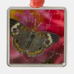 Fotografía de Sammamish Washington de la mariposa  Ornamento Para Reyes Magos