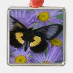 Fotografía de Sammamish Washington de la mariposa Adorno Cuadrado Plateado