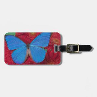 Fotografía de Sammamish Washington de la mariposa  Etiqueta Para Maleta