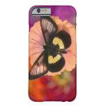 Fotografía de Sammamish Washington de la mariposa Funda De iPhone 6 Barely There