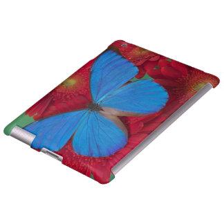 Fotografía de Sammamish Washington de la mariposa  Funda Para iPad