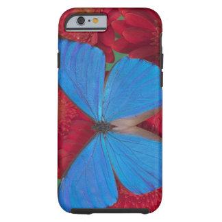 Fotografía de Sammamish Washington de la mariposa Funda Para iPhone 6 Tough