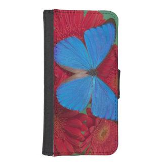 Fotografía de Sammamish Washington de la mariposa Fundas Billetera De iPhone 5