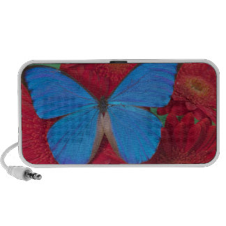 Fotografía de Sammamish Washington de la mariposa  Laptop Altavoces